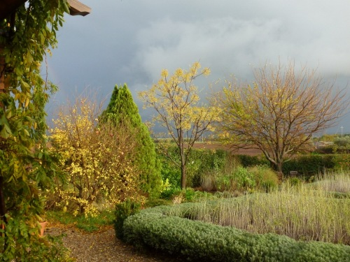 November brings sudden storms and dramatic skies