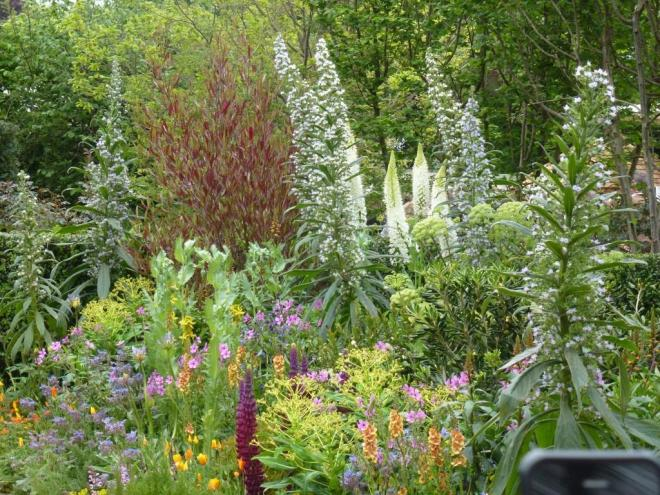 Chris Beardshaw's wonderful planting