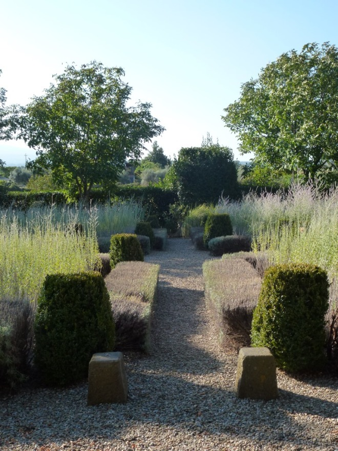 Central path with lavender, box and bay pruned