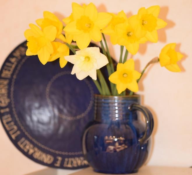 Blue Denby vase with Narcissus