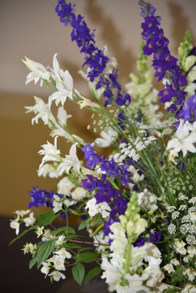Gladioli 'The Bride' is a beautiful elegant flower that returns each year in the garden and is lovely in a vase